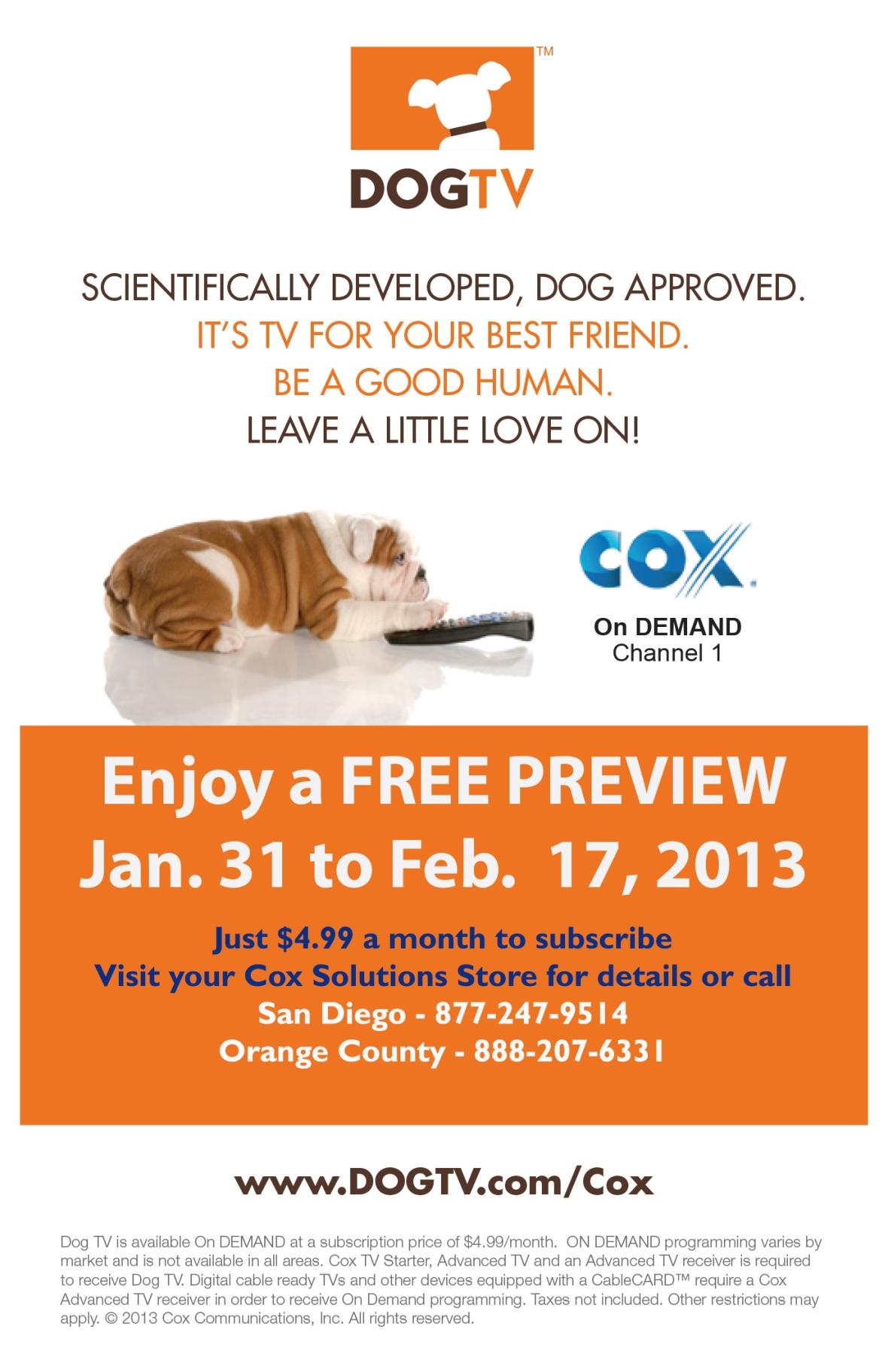 Dog Cox Launch Flyer