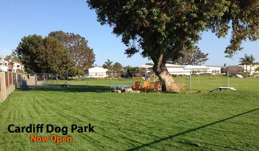 dirtydogpark
