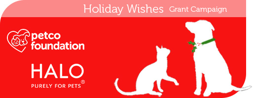 Petco Foundation Holiday Wishes Grant Campaign – Barking Beast