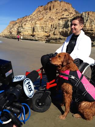 Ricochet the surfing dog surfs with dogs for charity and The Make a Wish Foundation