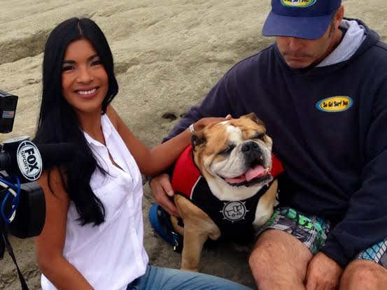 Dozer San Diego's Surfing Dog