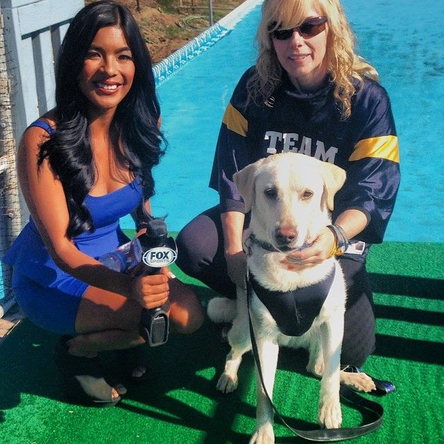Canine Dock Diving with Oceanside's Beach City Dogs