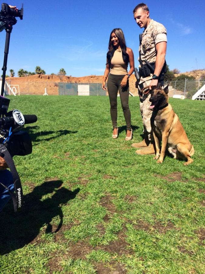 Camp Pendleton Military Canines