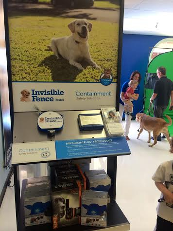 Invisible Fence Brand Saving Pets With Project Breathe One