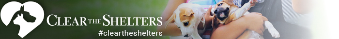 cleartheshelters_feature_header