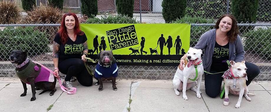 Dog aggression training classes, free pitbull puppies san ...