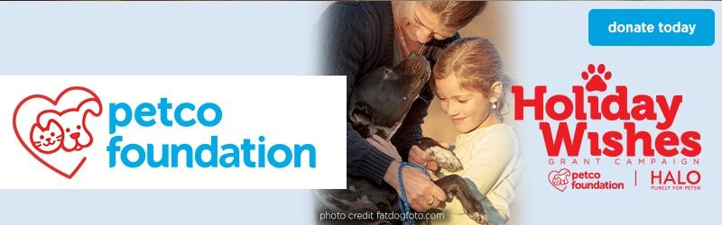 foundation-holiday-wishes-120715-img-727x200-hero-d.jpg